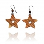 images/stories/virtuemart/category/star-earrings.jpg